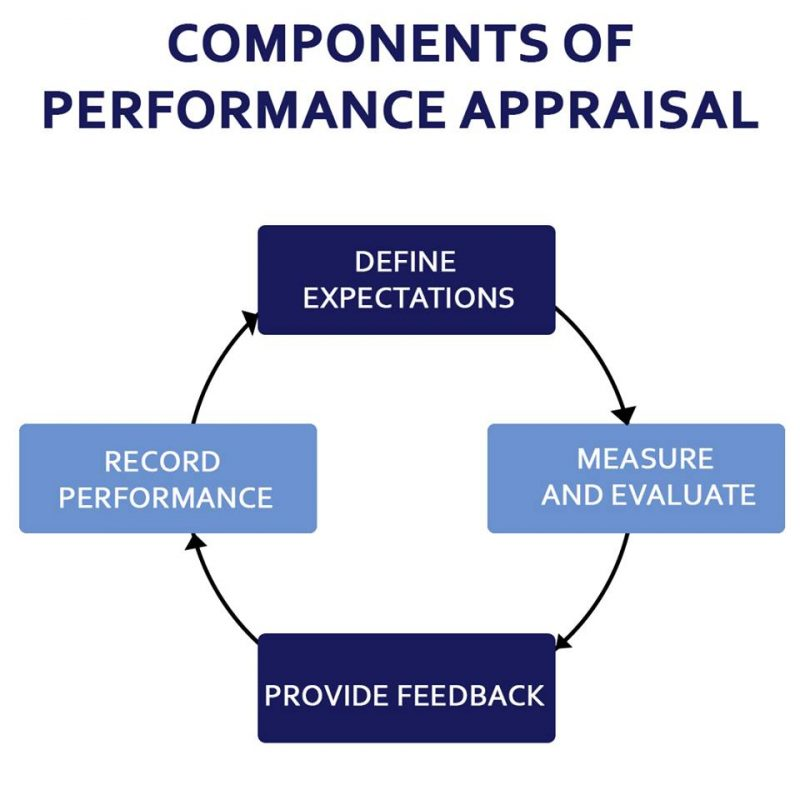 Performance Appraisal  Definition Components And Examples